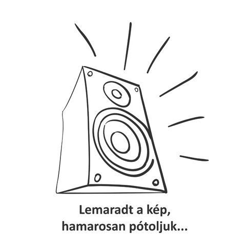 Rega Elicit-R audiophile integrated stereo amplifier - Demo
